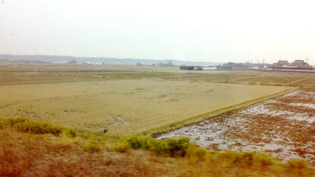 常磐線茨城県沿線の風景