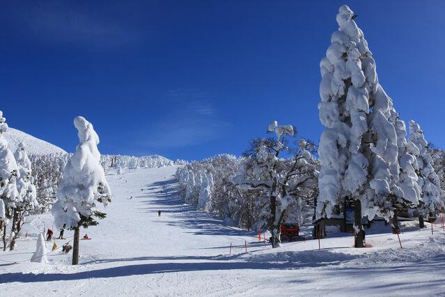 蔵王温泉スキー場(山形市)