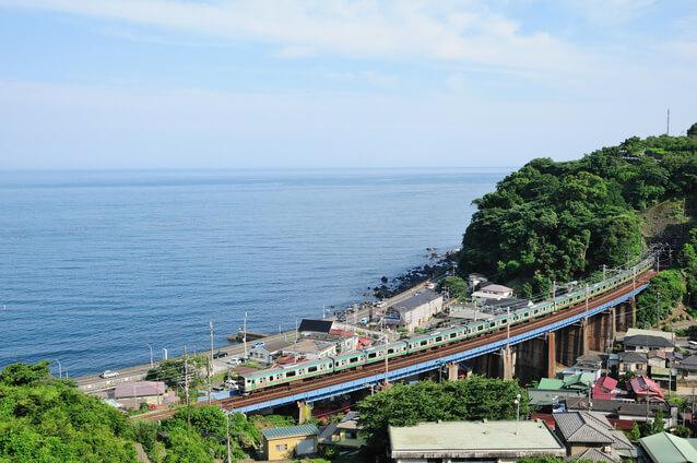 相模湾をバックに走る東海道線の列車